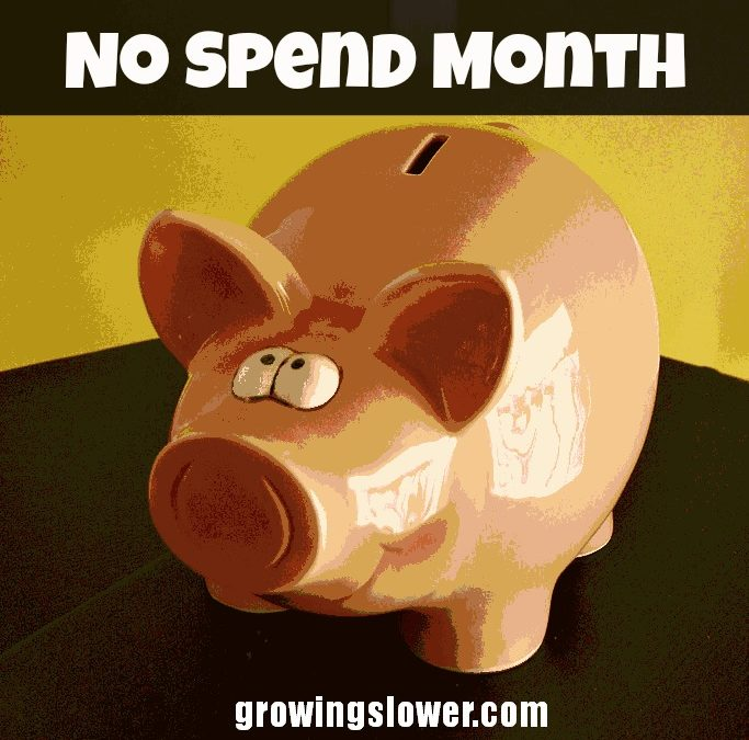6 Reasons YOU Should Take the No Spend Month Challenge