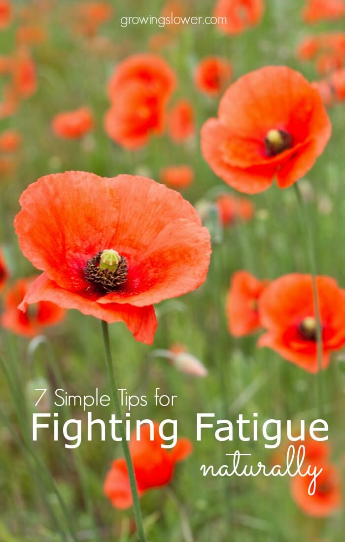 7 simple strategies to fight fatigue naturally, even when you're exhausted! When strict diet changes and long lists of supplements fail, try this.