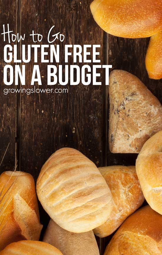 "Practical tips for going gluten free on a budget. I've been eating gluten free for about three years now, and here's what I've learned about eating gluten free on a shoestring grocery budget. Here's what readers are saying: ""These are some great ideas for shopping gluten-free! I'm always looking for some new and wonderful ideas. Being gluten-free it's not always easy to shop within a budget!"" - Tina"