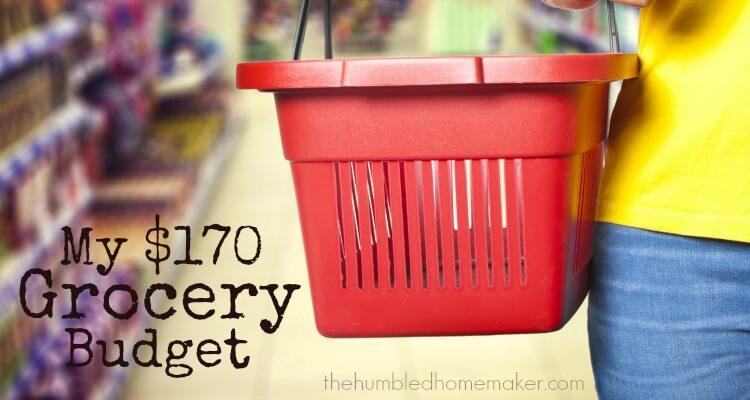 My $170 Grocery Budget