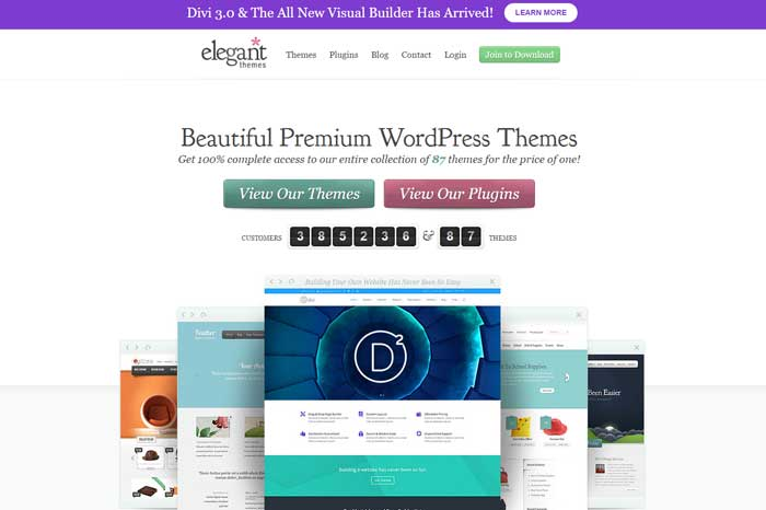 Elegant Themes has a huge selection of beautiful WordPress themes that will help you DIY a professional-looking blog design without the professional price tag.