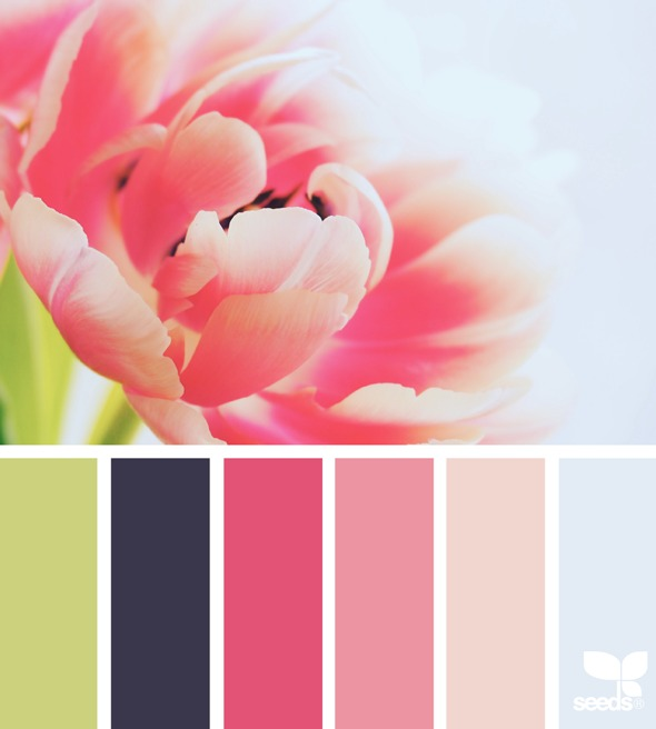 As you design your own blog, you'll need to choose a color palette! I love to start off by looking at Design Seeds for inspiration. Beautiful!