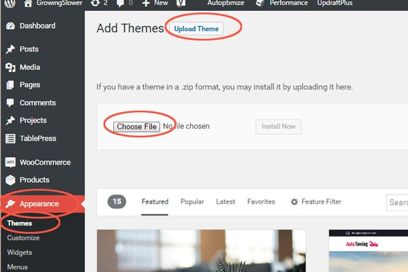 Here's a screen capture of a typical WordPress dashboard and where to look to upload your theme.