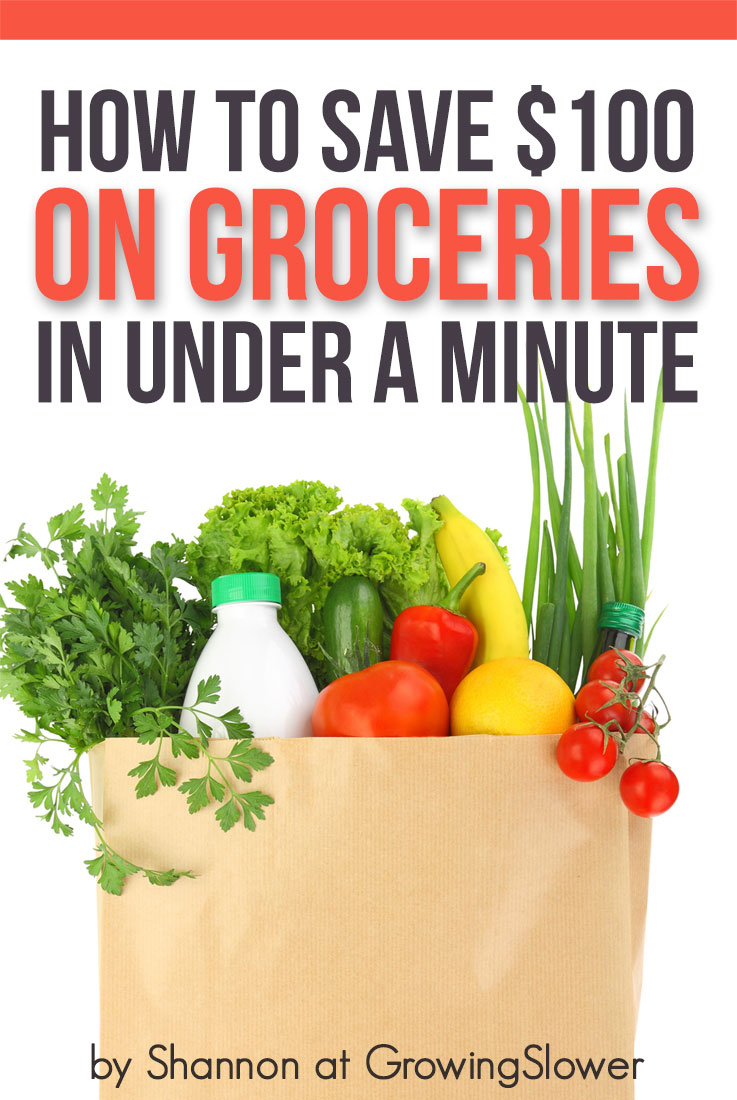 Grab your free grocery savings guide now!